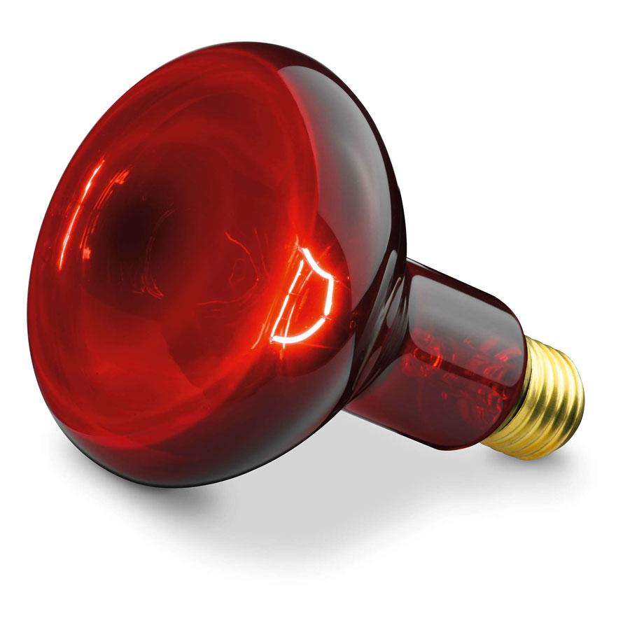 lampe ampoule infrarouge maroc